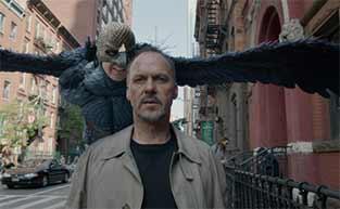 Top 16 Bird Films