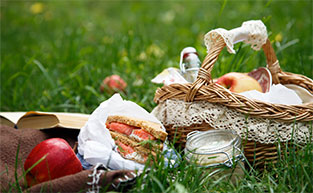 Best picnicking spots in Brisbane