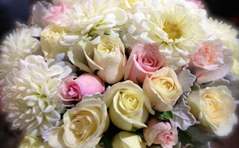 Flower_Trap_James_St_773_1.jpg