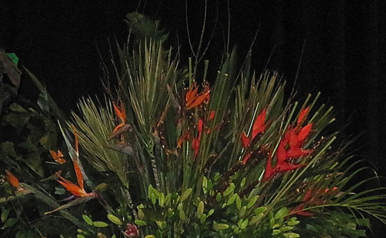 Flower_Trap_James_St_773_10.jpg