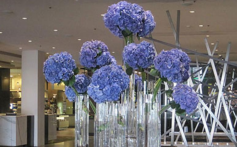 Flower_Trap_James_St_773_5.jpg