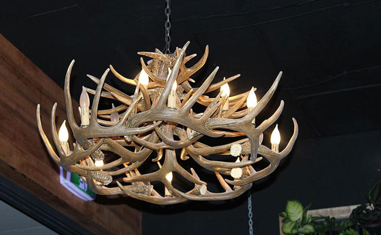 Moose--Gibson_Gallery_773_478_1.jpg