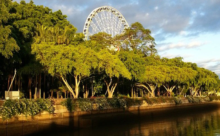 Wheel-of-Brisbane_gallery_773_478_4.jpg