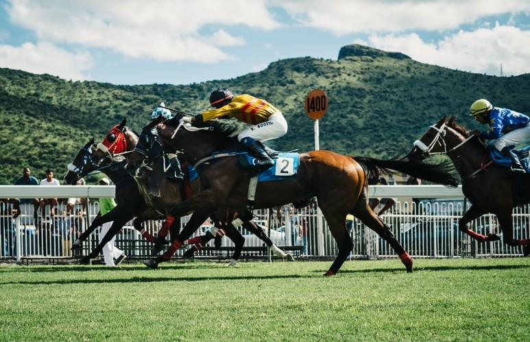 The Ultimate Guide to Melbourne Cup on the Gold Coast