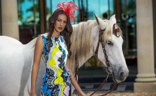 Gold Coast Melbourne Cup Guide